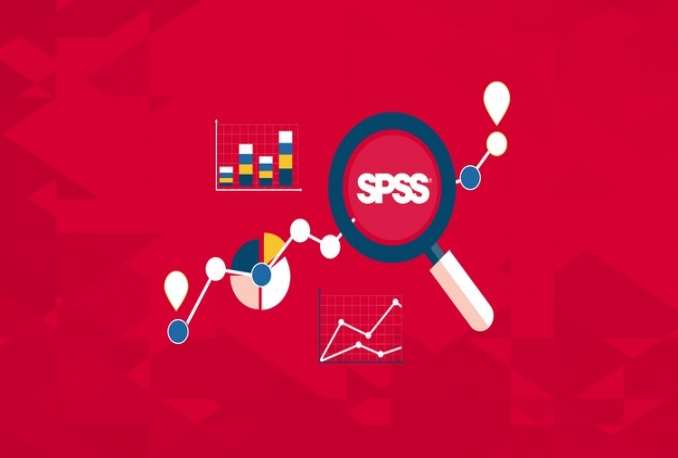 input your data to SPSS